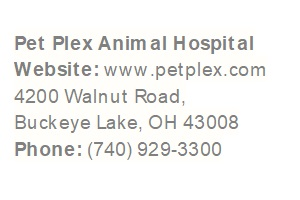 Pet Plex